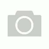 Mens 100% Hemp Shorts